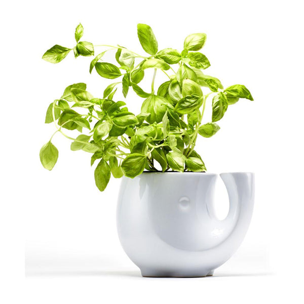 Eleplanter Self-Watering Stoneware Pot Planter