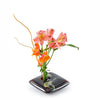 Square Ikebana Black Wave Vase