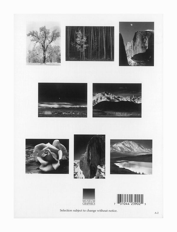 Ansel Adams: A Collection of Notes Boxed Notecards