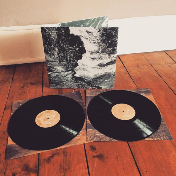 Admiral Fallow - Tiny Ruins Vinyl - Braw Wee Emporium