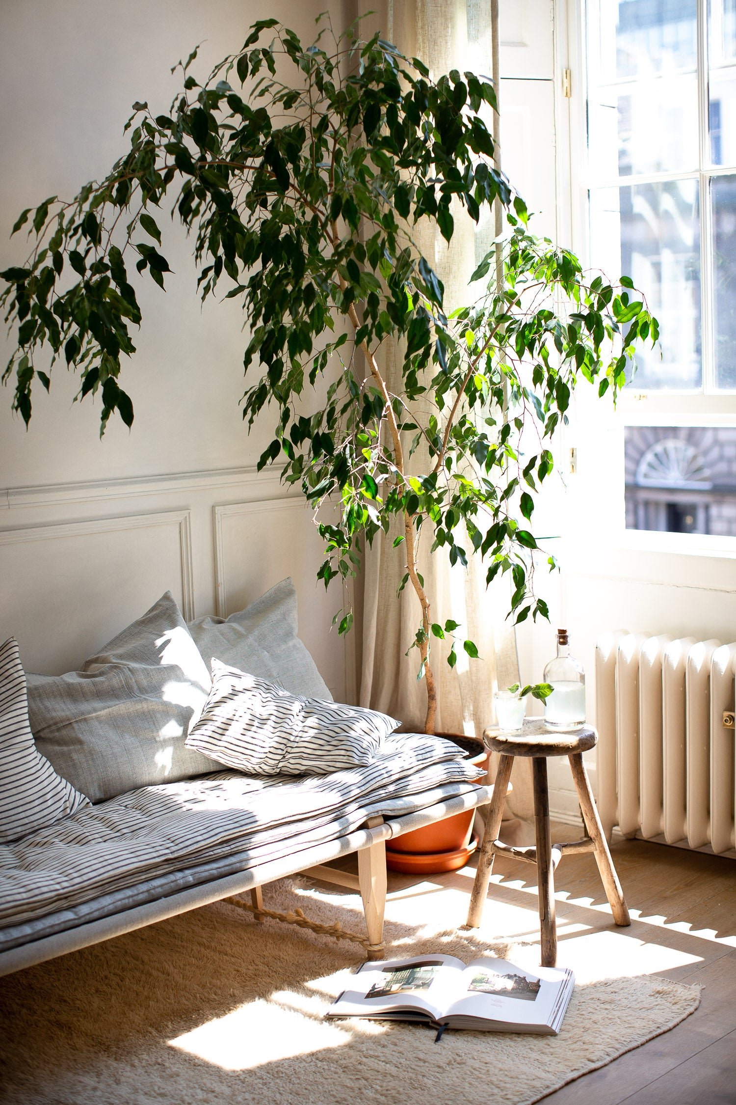 cosy daybed by a large window