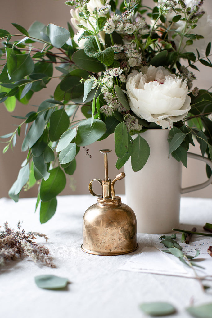brass plant water mister