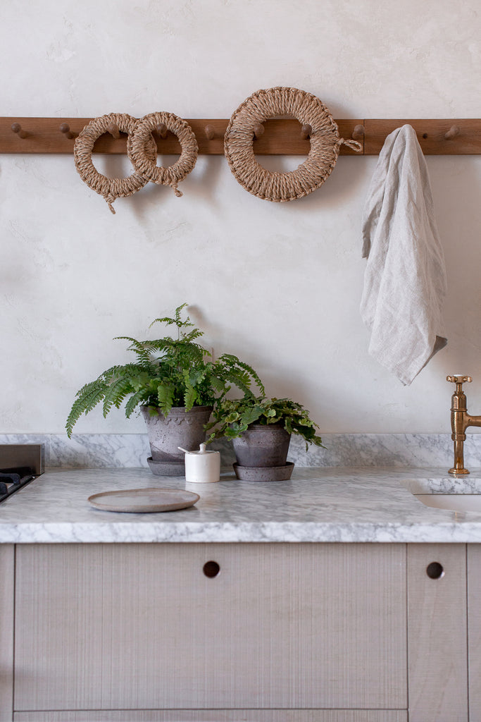 decorating your kitchen with ferns in plant pots