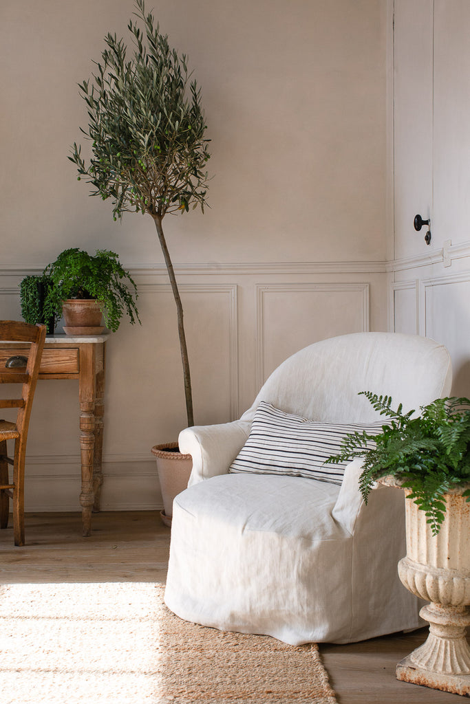 natural home decor with linen and an olive tree