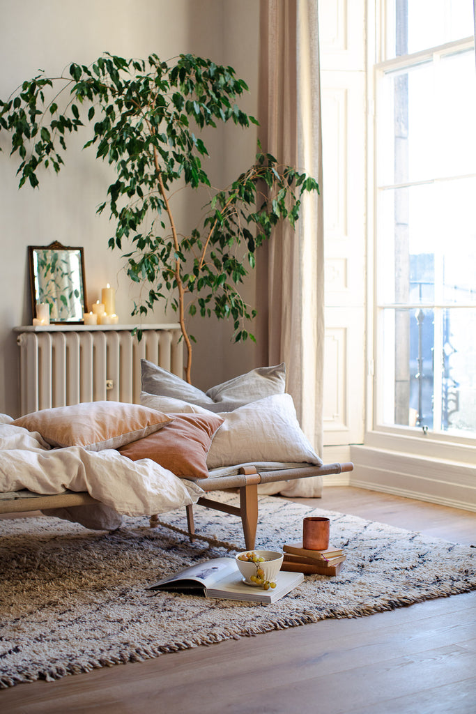 warm sunny room with daybed by a large window