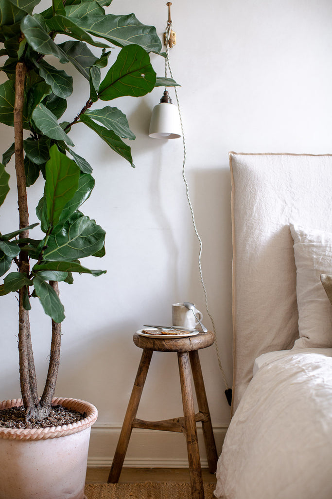 bedroom ficus plant and linen bedding
