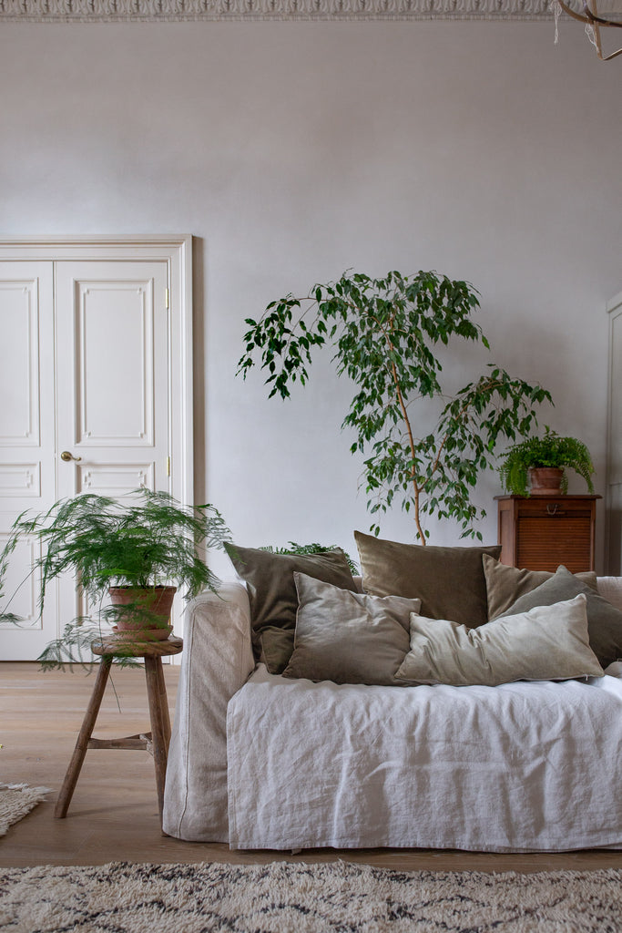 natural biophilic living room decor with plants, velvet and linen