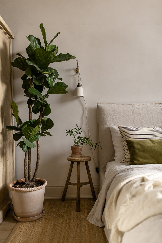natural bedroom decor with plants