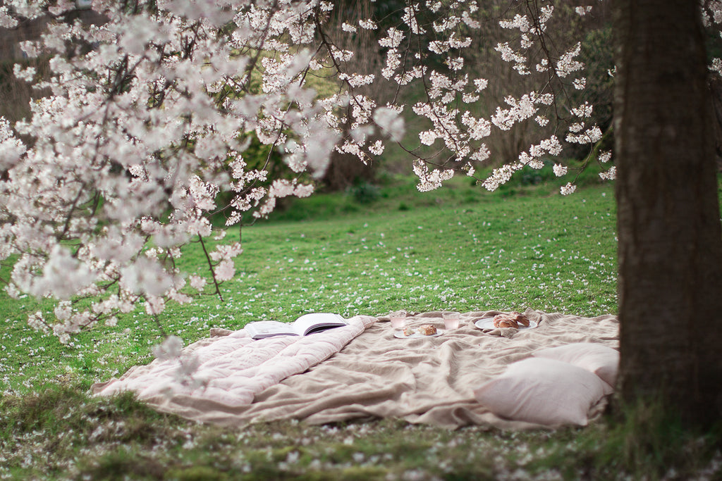 pink picnic under a cherry blossom tree