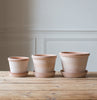 Bergs Potter Parade plant pot UK