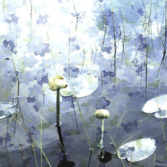 Blue Water Lily Pads