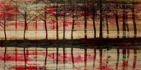 Red Reflections