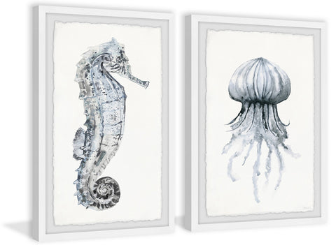 Seahorse and Jellyfish Diptych