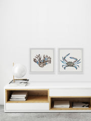 Luminous Crab and Coral Diptych