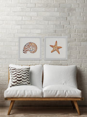Starry Shell Diptych