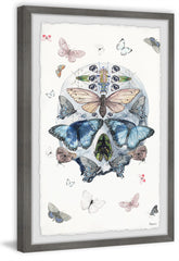 Blooming Butterfly Skull