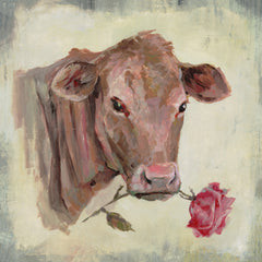 Romantic Cow