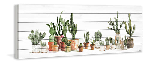 Potted Cactus Line II