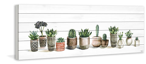 Potted Cactus Line