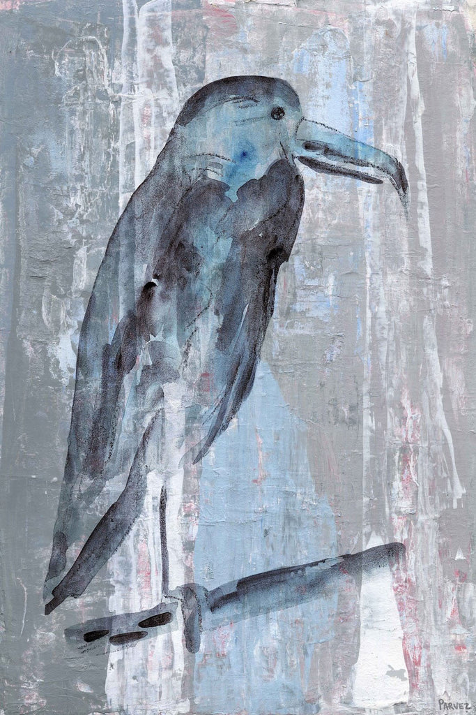 Blue-Grey Bird