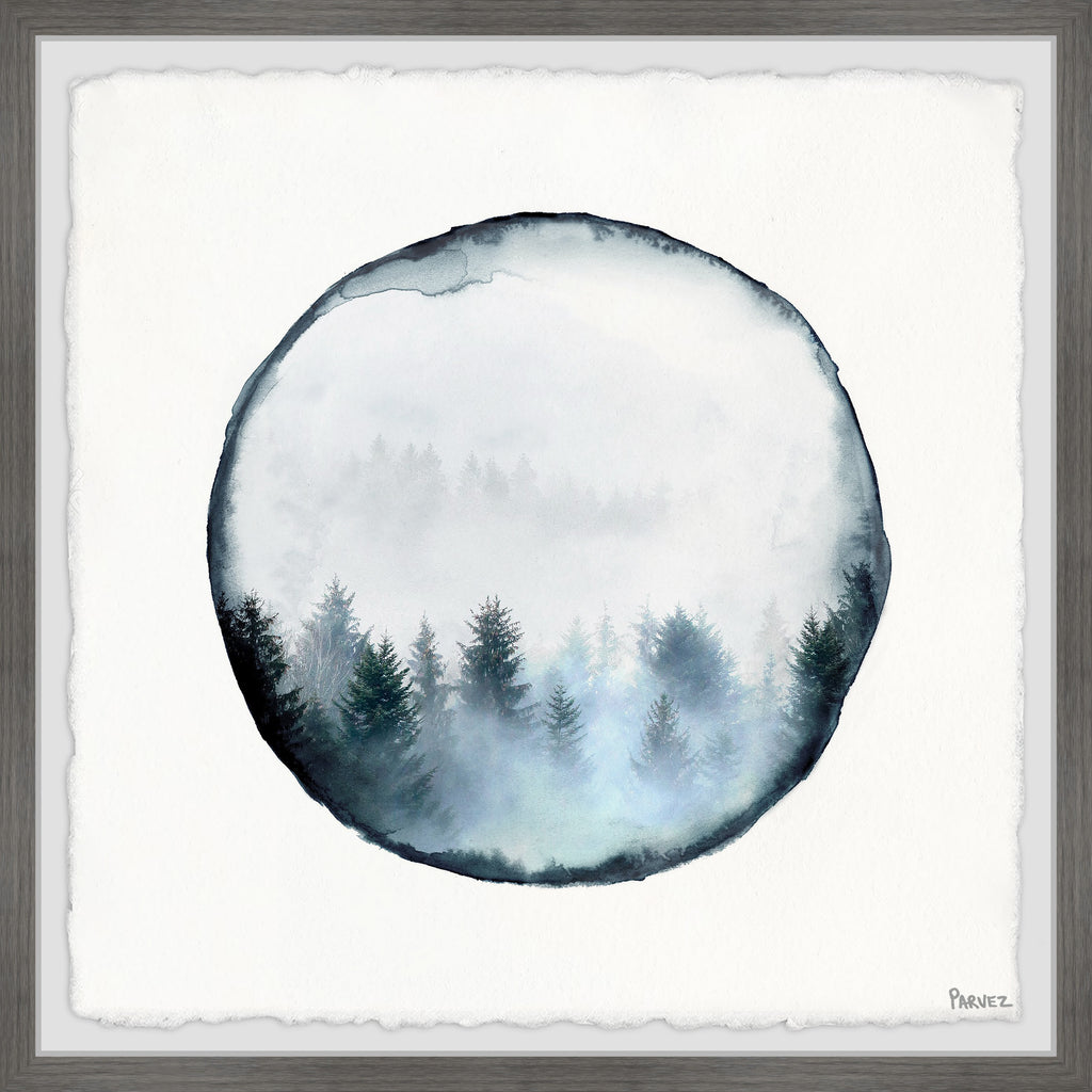 Rounded Foggy Forest