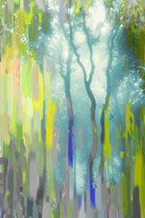 Painted Tree Forest