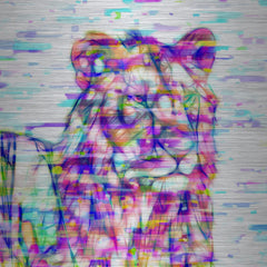 Lion Colors