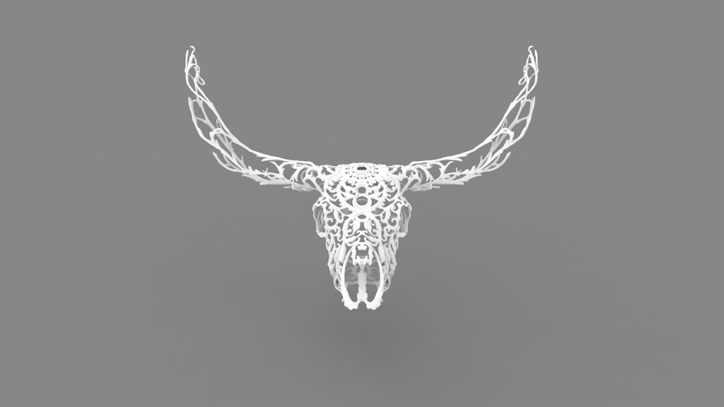 Canones Creek - Texas Longhorn Skull - 3D White