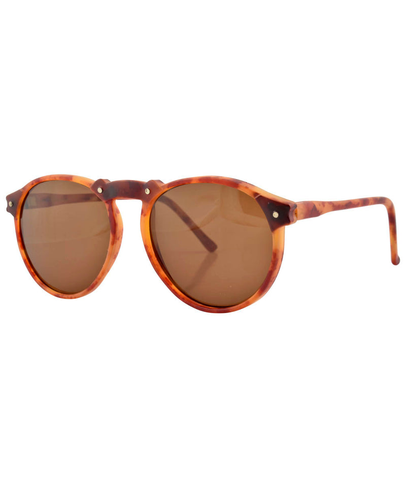 arizona tortoise sunglasses