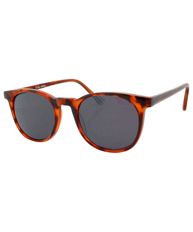 brophy tortoise sd sunglasses