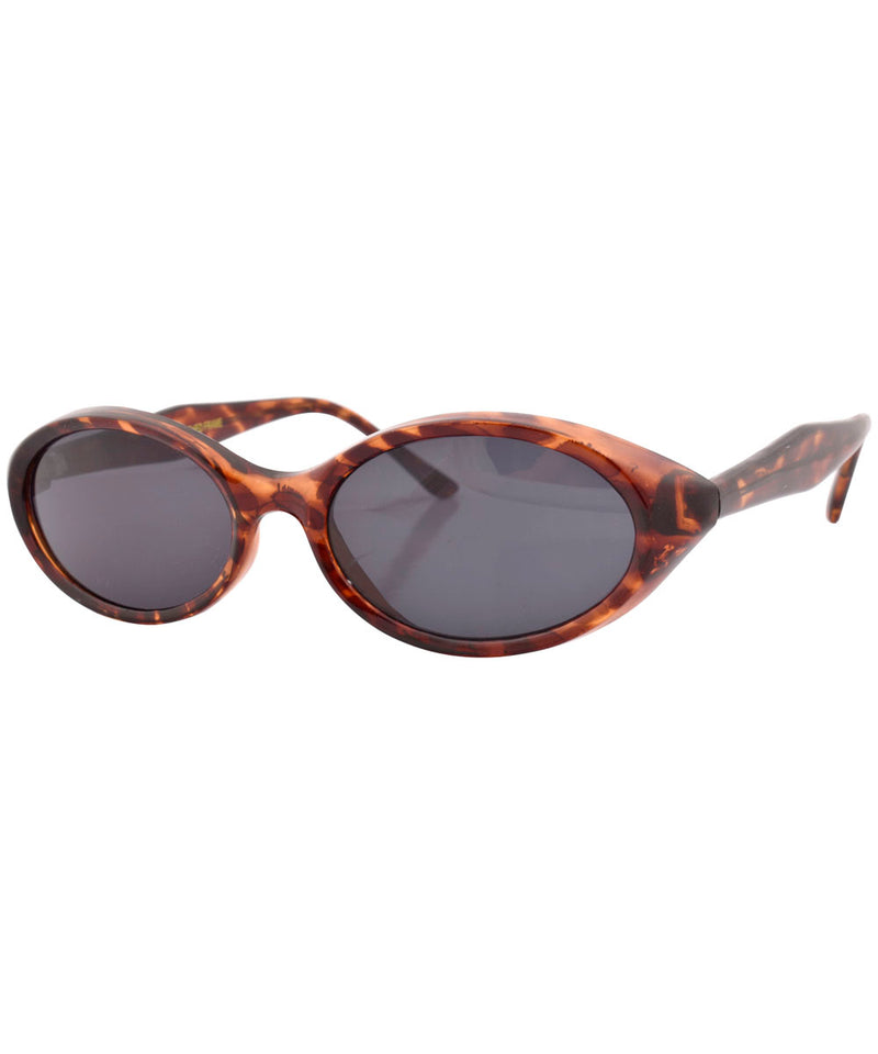 castle tortoise sd sunglasses