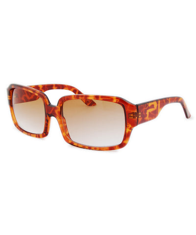 epic tortoise sunglasses