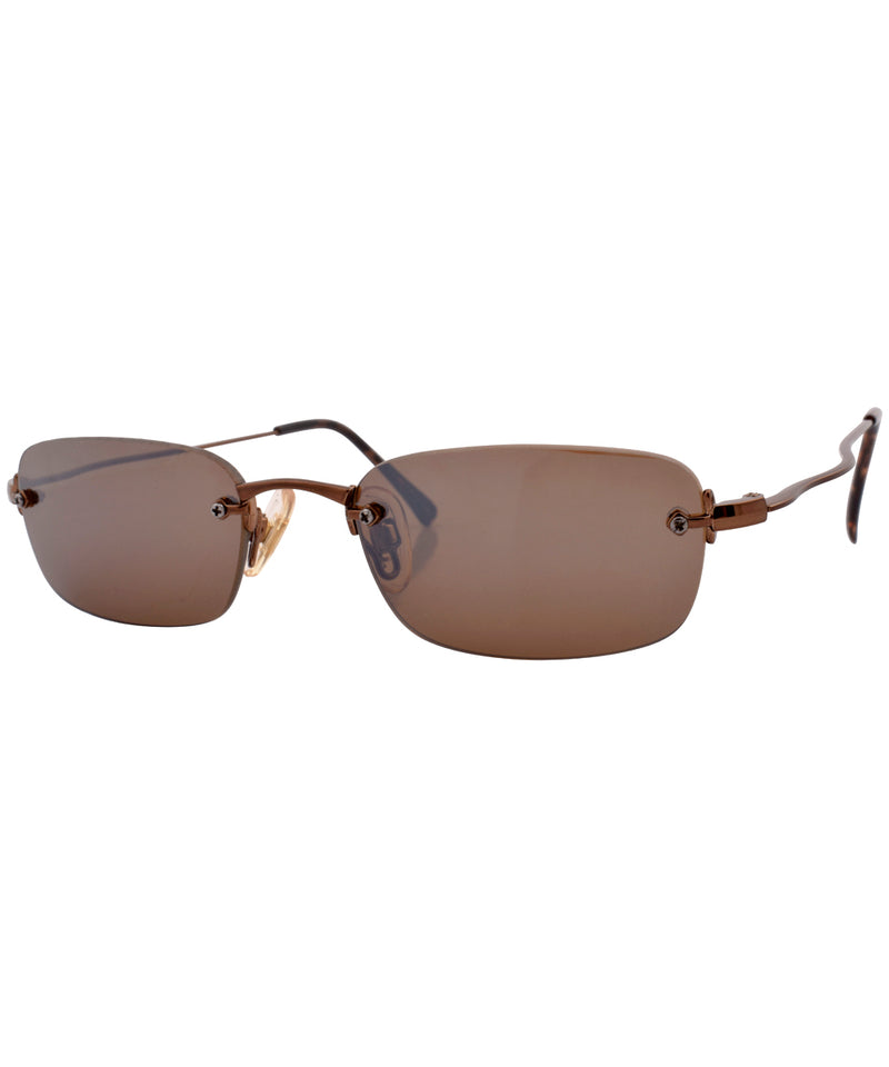 hidden brown sunglasses