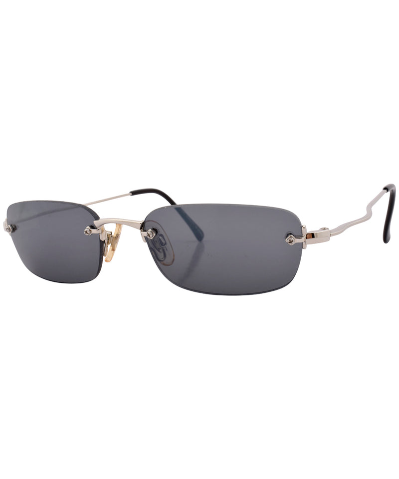 hidden silver sunglasses