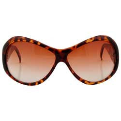 hungry tortoise sunglasses