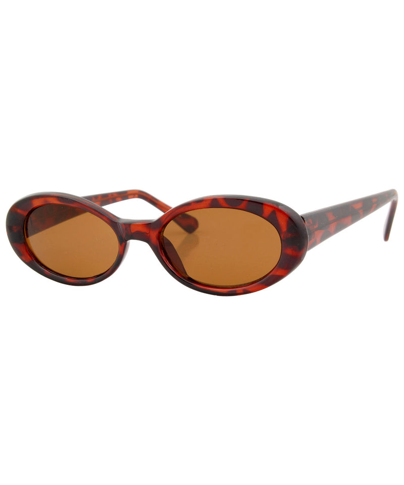 insight tortoise sunglasses