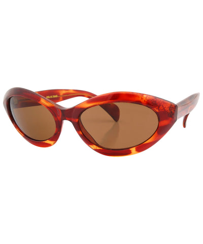 moray tortoise brown sunglasses