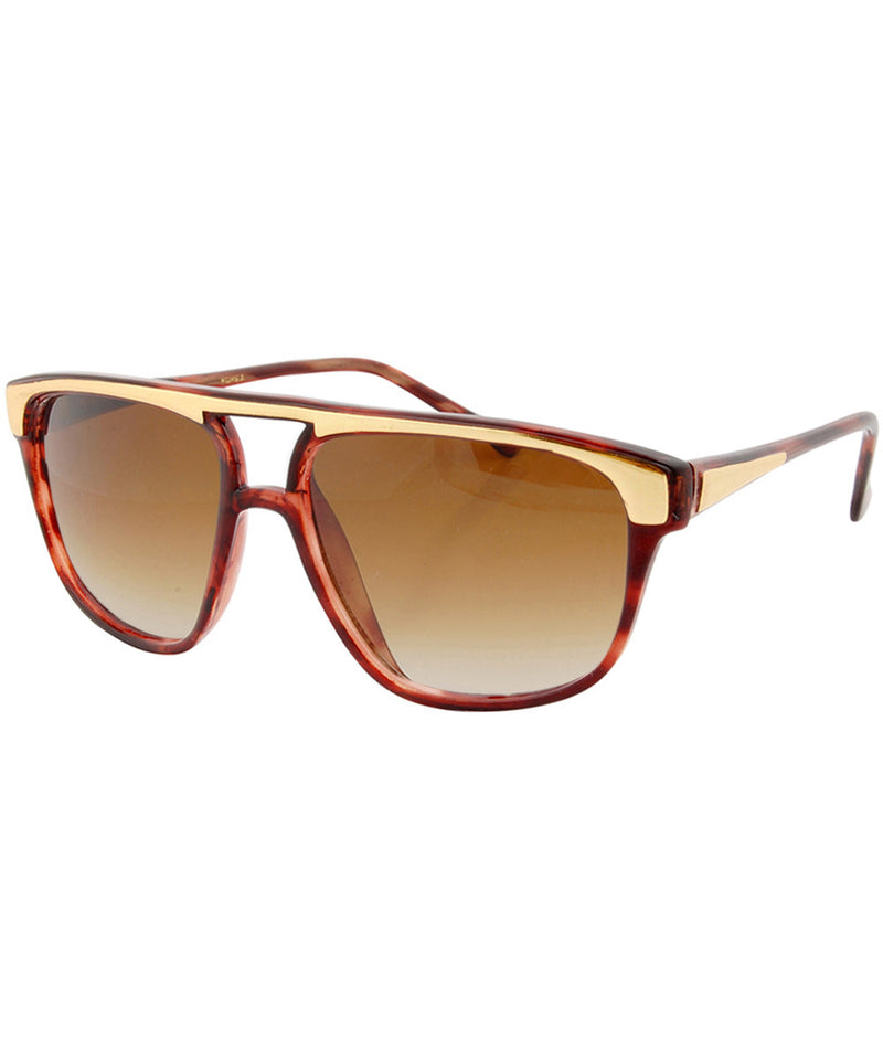 mr dan tortoise sunglasses