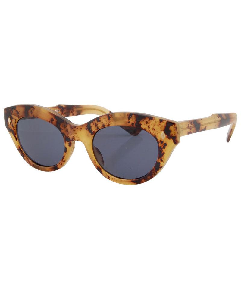 puddy tat toast sunglasses