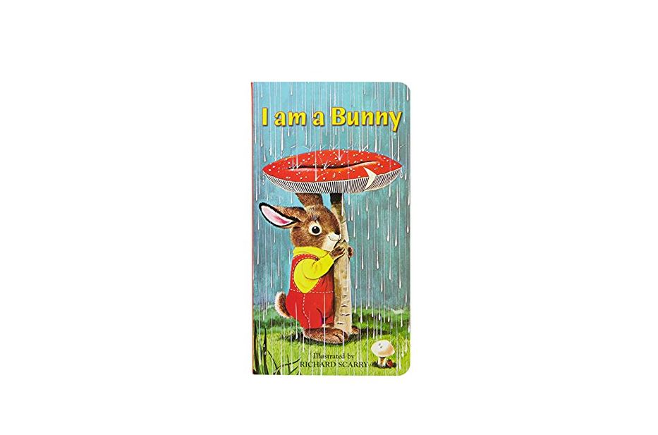Kids Books & Flash Cards