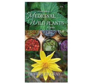 A Field Guide to Medicinal Wild Plants of Canada Pamphlet