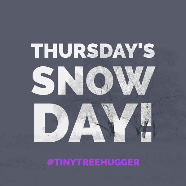 Thursday's SNOW DAY and something special for you.