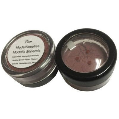 Modelsupplies Model's Minerals Plum Blush Rouge Makeup NIP - ModelSupplies