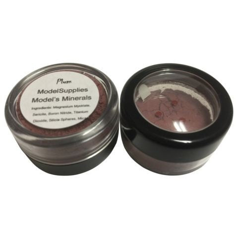 Modelsupplies Model's Minerals Plum Blush Rouge Makeup NIP