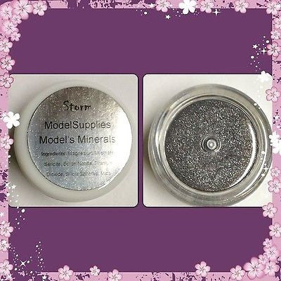 Modelsupplies Model's Minerals Storm Mineral Eye Shadow Makeup NIP