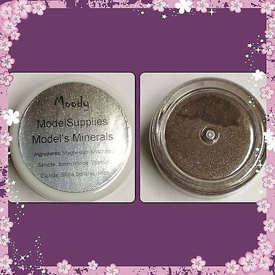 Modelsupplies Model's Minerals Moody Mineral Eye Shadow Makeup NIP - ModelSupplies