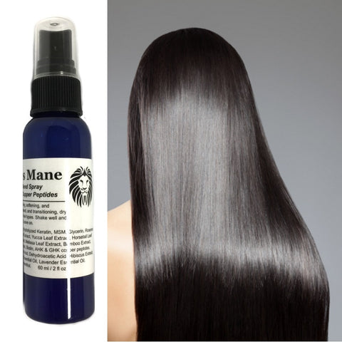 ModelSupplies Model's Mane Copper Keratin Hair Spray on Treatment Smooth Shiny - ModelSupplies