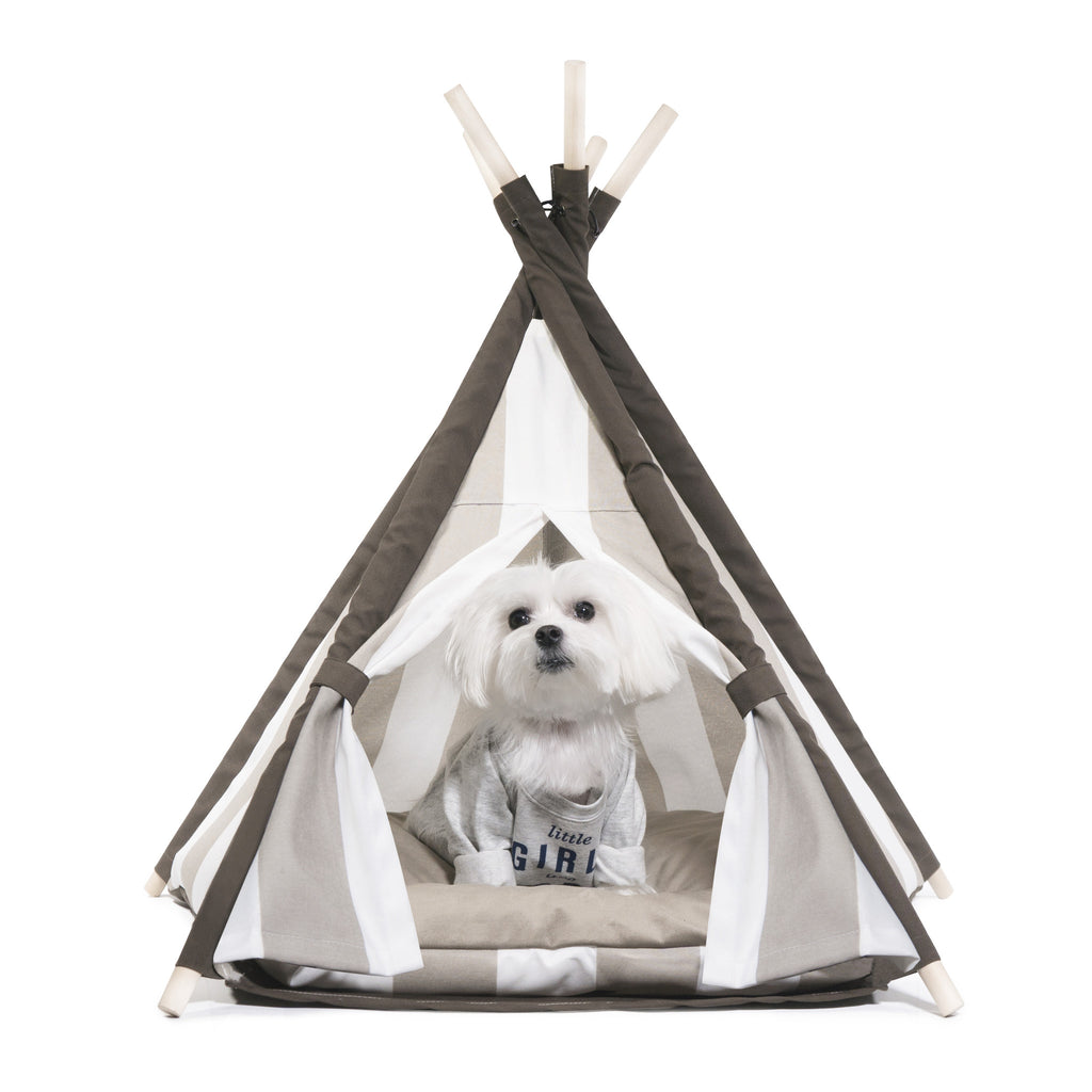 Elegant Pups Designer Dog Teepee tent house.  Dog Teepee for small and medium sized dogs.  Front view with maltese dog.
