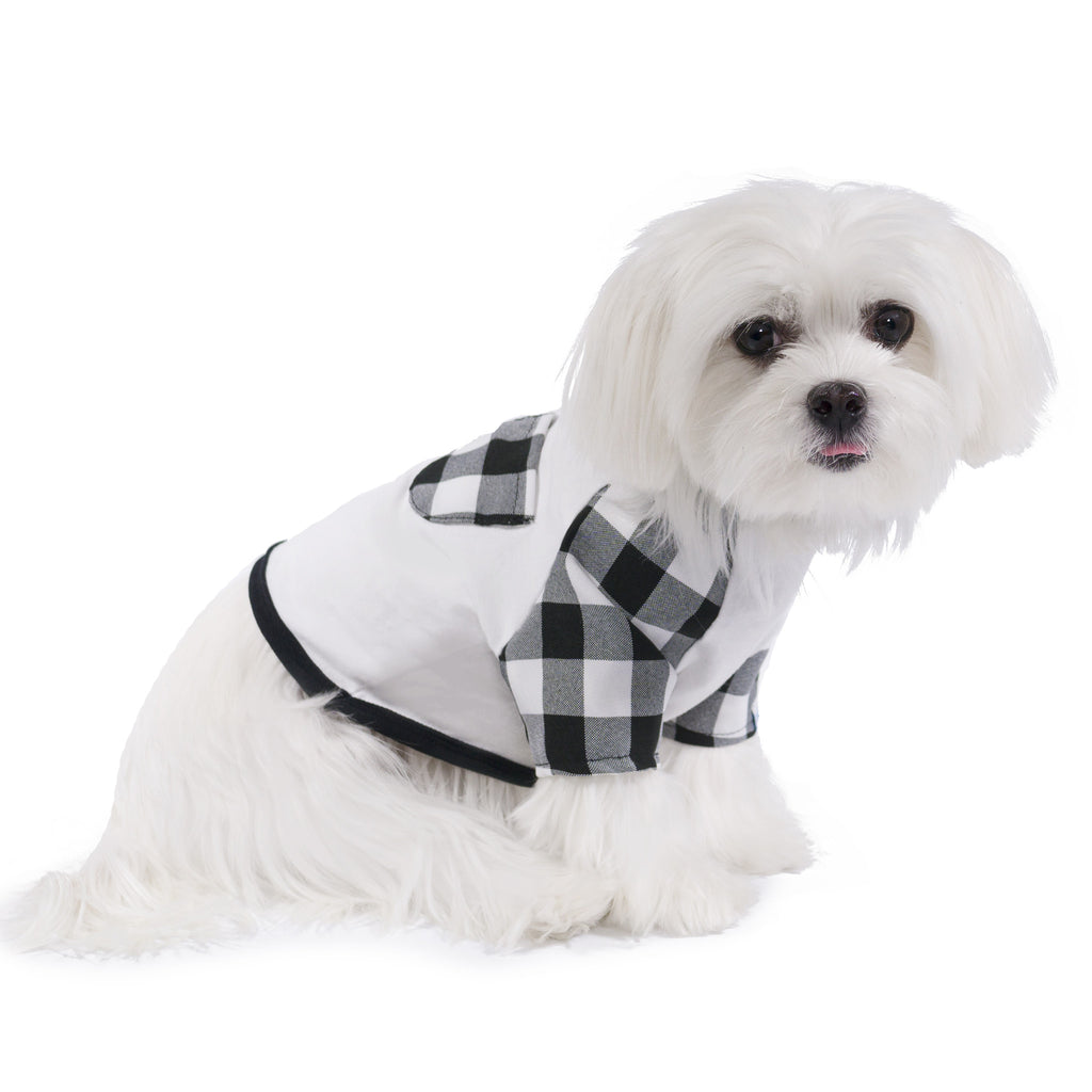 Modern Pups Gingham Classic Cotton T-Shirt for Dogs
