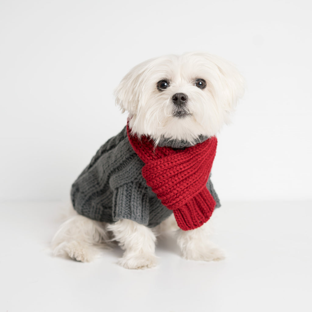 Modern Pups Gray Cable Sweater with Scarf by United Pups